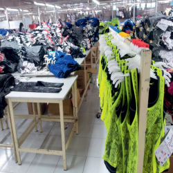 Export Garments Division (Power)